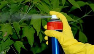 Εντομοκτόνο για προστασία φυτών